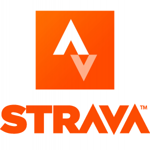 Strava Icon #58991 - Free Icons Library