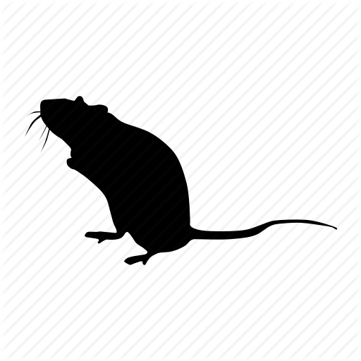 Rat,Muridae,Mouse,Pest,Rodent,Illustration,Muroidea,Tail,Gerbil,Silhouette,european water shrew,Beaver